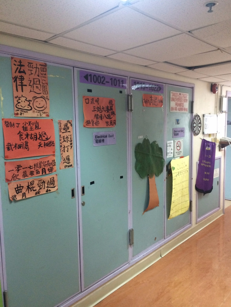 The colourful legacies of my hallmates