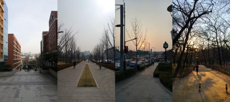 ZhengWei_1c